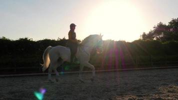 Dressur, Reitshow Mädchen bei Sonnenuntergang