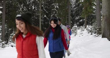 Gruppe von Menschen Winter Schneewald spazieren Freunde Weg in schneebedeckten Park video