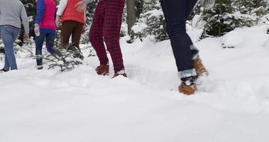 Gruppe von Menschen Winter Schneewald gehen lächelnden Freunde Weg in schneebedeckten Park video
