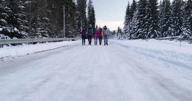 Gruppe von Menschen Winter Schneewald spazieren lächelnde Freunde im schneebedeckten Park sprechen video