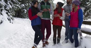 grupo de pessoas na floresta de neve de inverno caminhando amigos sorridentes falando caminho no parque nevado