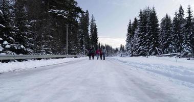 grupo de personas, invierno, bosque nevado, caminar, sonriente, amigos, utilizar, teléfono inteligente, mensajes de texto, internet, en, parque nevado video