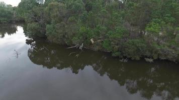 lac Blackburn