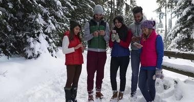 Group Of People Winter Snow Forest Walking Smiling Friends Taking Selfie Photo In Snowy Park