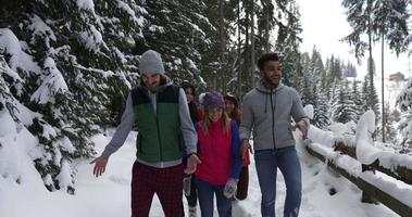 Group Of People Winter Snow Forest Walking Smiling Friends Talking Path In Snowy Park