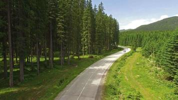 Camera flying on forest road in Slovenia