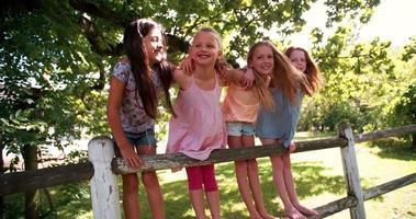 niñas en la cerca debajo de un árbol en el día de verano