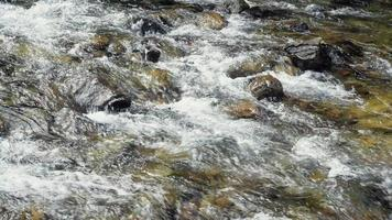 A River Flows Over Rocks video