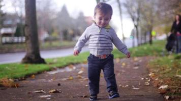 Adorable niño caminando en un parque en un día de otoño video