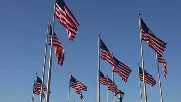 bandeiras americanas balançando ao vento