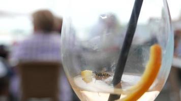vespa in una bevanda che si arrampica fuori