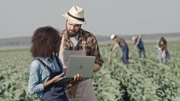 giovani agricoltori maschi e femmine con il portatile sul campo