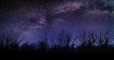 erstaunliche Büsche Nachthimmel Milchstraße Sterne Zeitraffer 4k