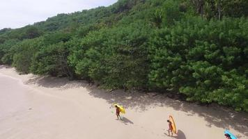 passeggiata sulla spiaggia video