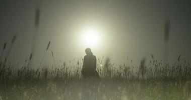 campo de trigo, plano de longo alcance garota pensando, silhueta