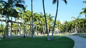soundscpe park miami beach