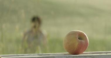 campo di grano, primo piano primo piano mela rosso-gialla, secondo piano ragazza e ragazzo sfocati