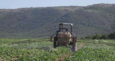 tractor rociar verduras con insecticida