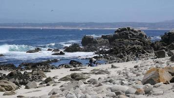point pinos pacific grove monterey