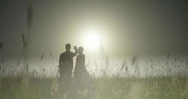 campo de trigo, brote largo, silueta, una pareja joven con la mano hacia el sol video