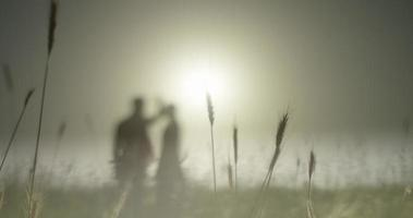 campo de trigo, silueta, trigo en primer plano, plan de largo alcance desenfocado niña y niño
