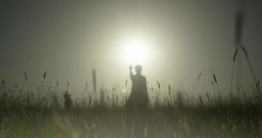 campo de trigo, brote largo, silueta, mano arriba niña al sol video