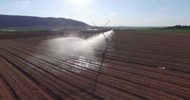 vista aérea de campos de milho sendo irrigados com sistema de pivô central video