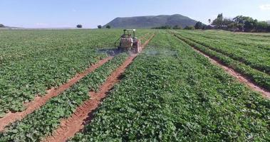 Vista aérea del tractor rociando verduras con insecticida