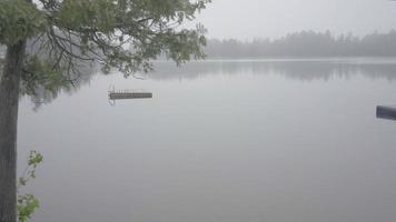 ontario canada deserto foresta natura lago estate giorno nebbioso brutto tempo mattina video