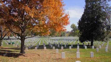 cemitério de arlington durante o outono video