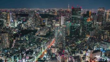 Elevated view of Tokyo video