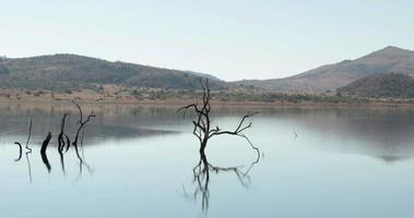 scena della natura in sud africa