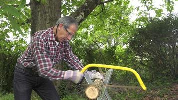 tuttofare sega a mano tronchi di quercia