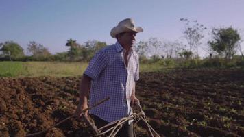 6 uomini con cappello che coltivano e arano il terreno con il bue