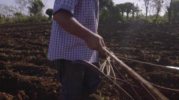 8-fazendeiro arando o solo e chicoteando o boi video