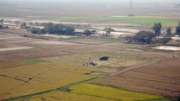 Draufsicht auf einen Mähdrescher, der Reiskulturen erntet