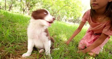süßes junges afroamerikanisches langhaariges brünettes Mädchen, das einen Welpen kuschelt