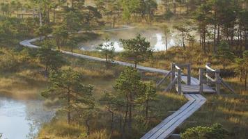 vandringsled som löper genom en våtmarksskog med dimma som stiger upp från dammar