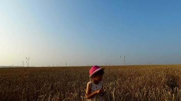 kleines Mädchen sammelt Weizen Ährchen. Weizen wurde gelb. bald beginnt die Ernte.