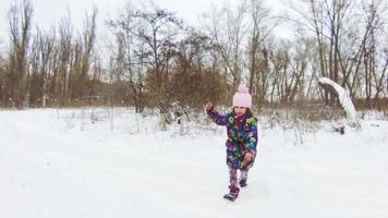 menina brincando com seu labrador preto na neve video