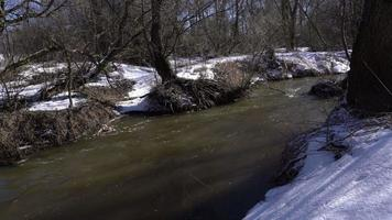 Snowy Forest with small river at early spring