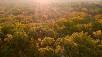 Antenna 4K: vista dell'uccello sulla terra desolata in autunno