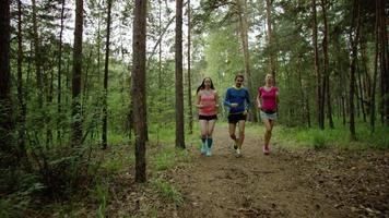 run training in the forest