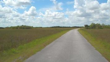 parco nazionale delle Everglades della valle degli squali video