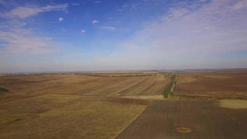 Champ de blé récolté contre ciel nuageux