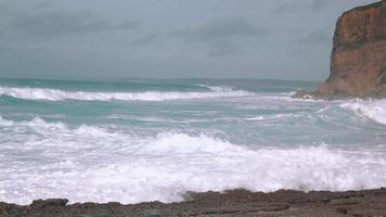 grandi onde dell'oceano che si infrangono sulla riva video