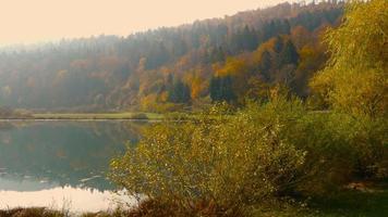 4k aéreo: colorido reflejo del agua del bosque otoñal