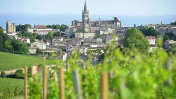 Frankreich, Aquitaine Region, Gironde Abteilung, Saint-Emilion, Bordeaux Weinberg video