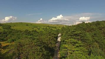 vista aerea del bellissimo paesaggio erboso con alberi
