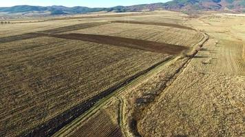 Herbst landwirtschaftliches Feld video